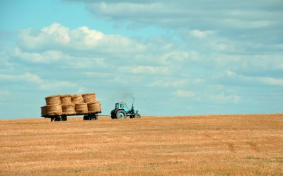 Information for farmers, landowners and rural businesses